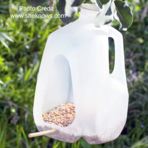 Bird Feeder from She Knows