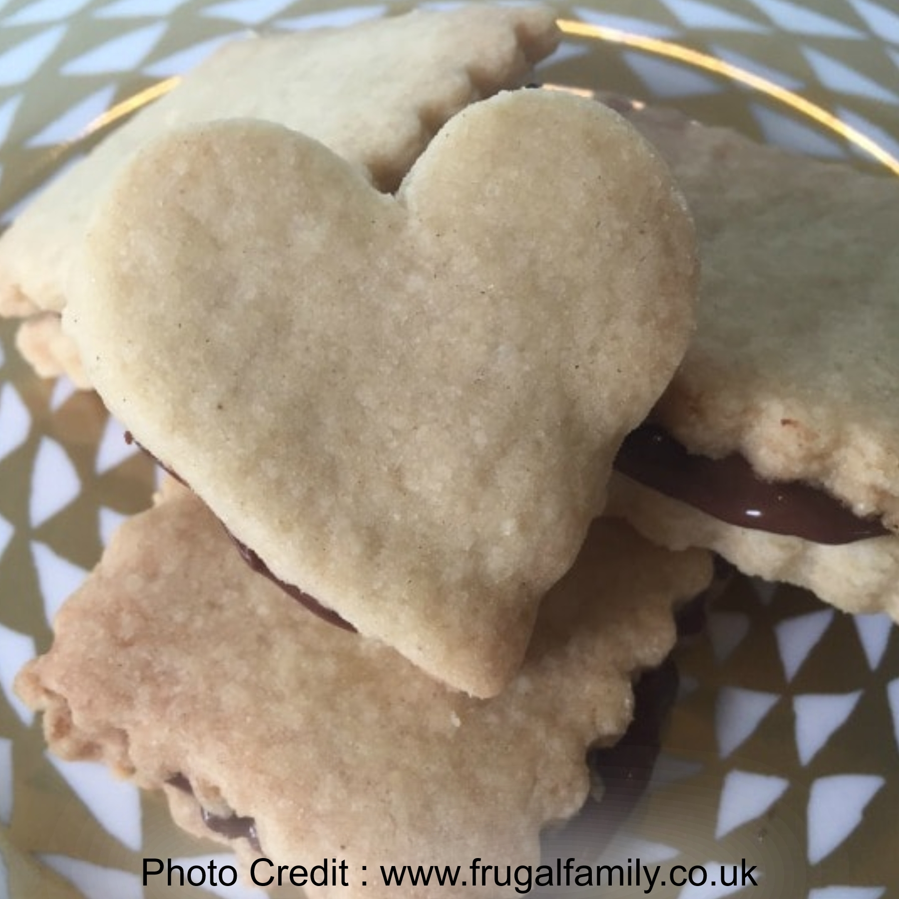 Easy Three Ingredient Biscuits from Frugal Family