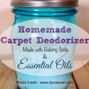 Carpet Deodorizer from DIY Natural