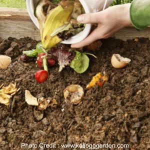 Create a compost heap