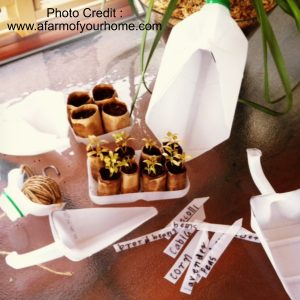 Garden Trowel and Seed Tray from A Farm Of Your Home
