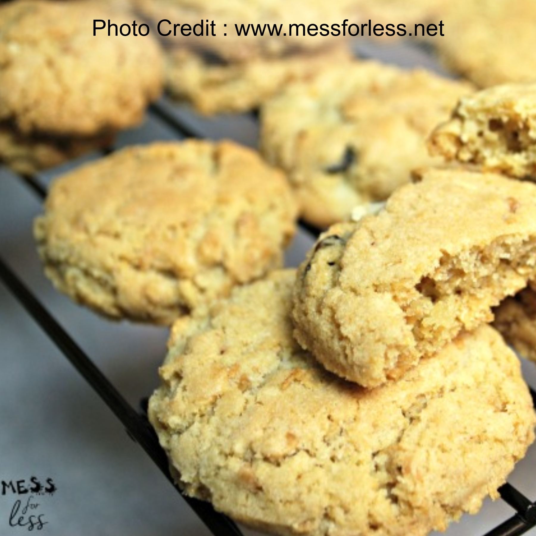 Granola Cookies from Mess For Less