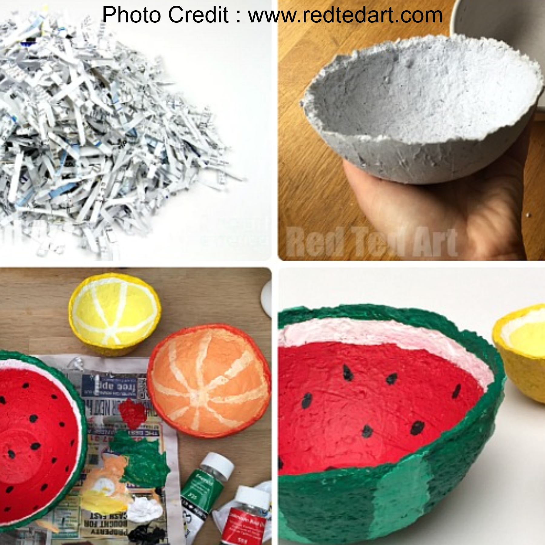 Paper Mache Bowls from Red Ted Art