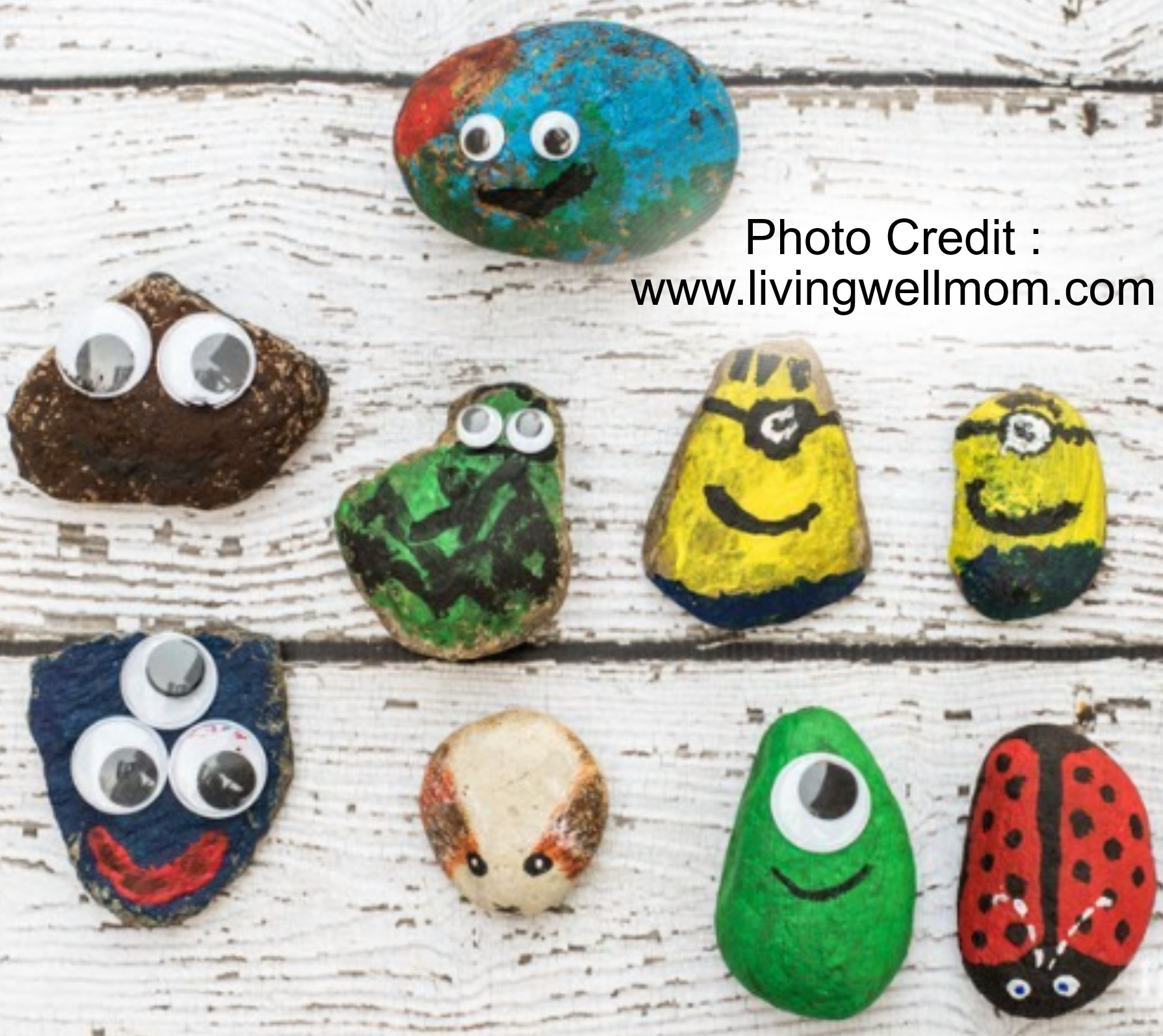 Pet Rocks from Living Well Mom