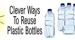 Clever Ways To Reuse Plastic Bottles